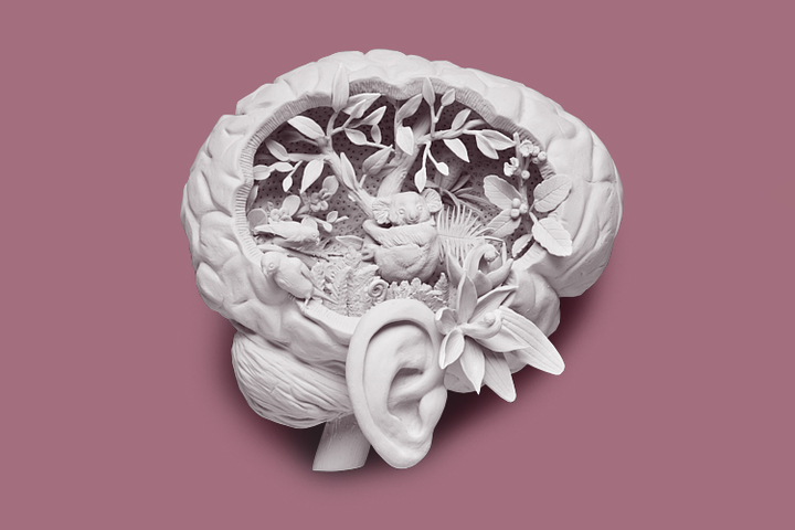 Галлюцинации при шизофрении: виды, проявления и лечение