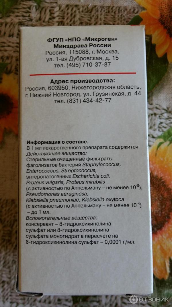 Клебсиелла пневмония. что это такое в моче, мазке из зева, кале, симптомы, степени, лечение