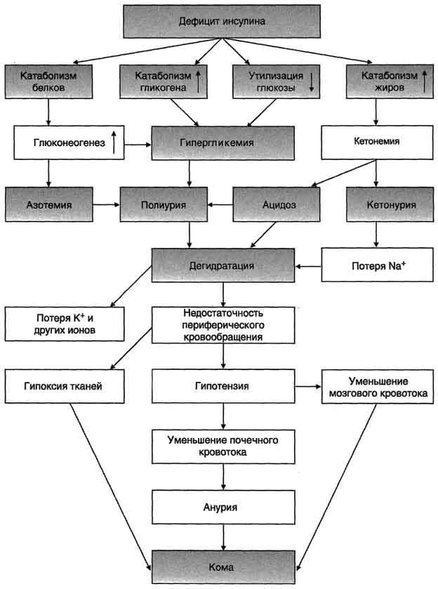 Диабетическая кома у детей: виды, симптомы, неотложная помощь