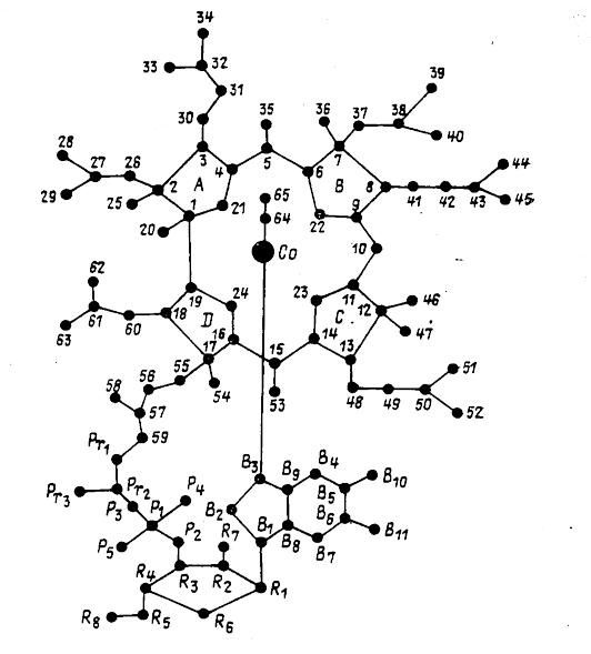 Витамин в12. применение, для чено нужен. что такое цианокобаламин.
