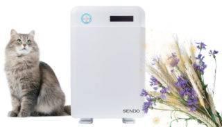 Рейтинг очистителей воздуха для аллергиков и астматиков