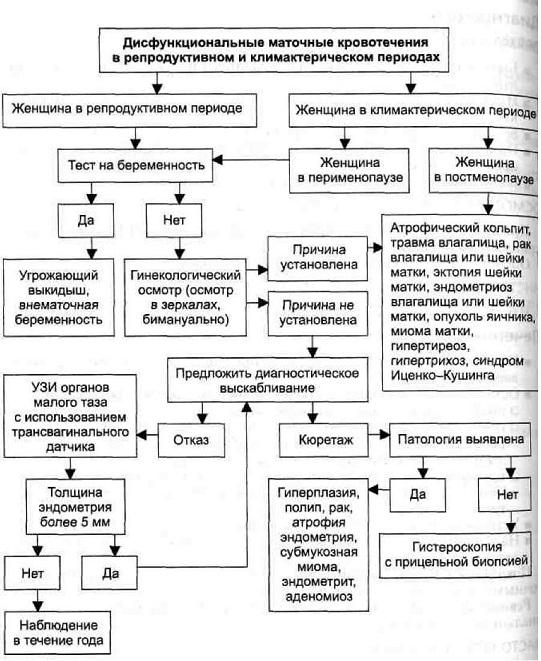 Дисфункциональное маточное кровотечение - лечение, причины