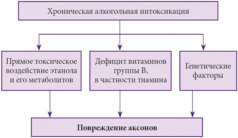 Часть i. общая патофизиология — студопедия