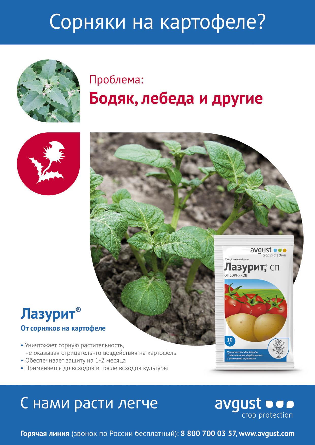 Лазурит от сорняков — инструкция по применению и нормы расхода препарата
