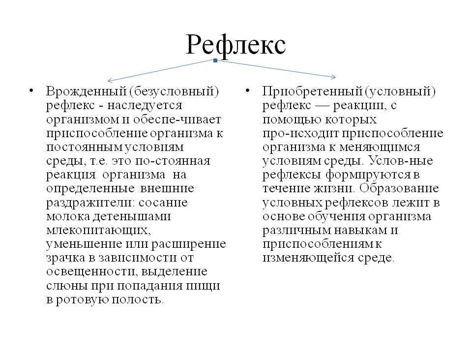 Общая физиология центральной нервной системы  [1988 воробьева е.а., губарь а.в., сафьянникова е.б. - анатомия и физиология: учебник]