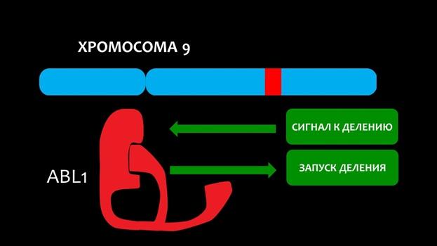 Пневмония тяжелого течения – причины развития, лечение, реанимация