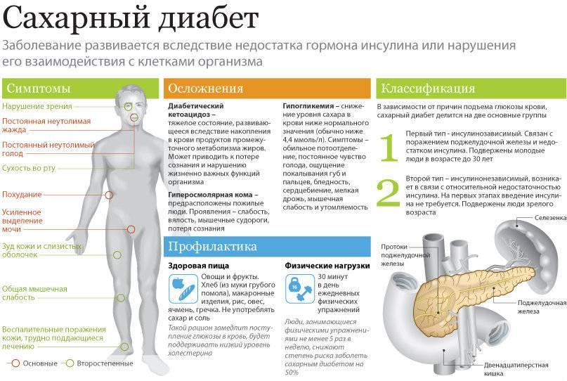 Повышен инсулин в крови: причины, симптомы, лечение, диета