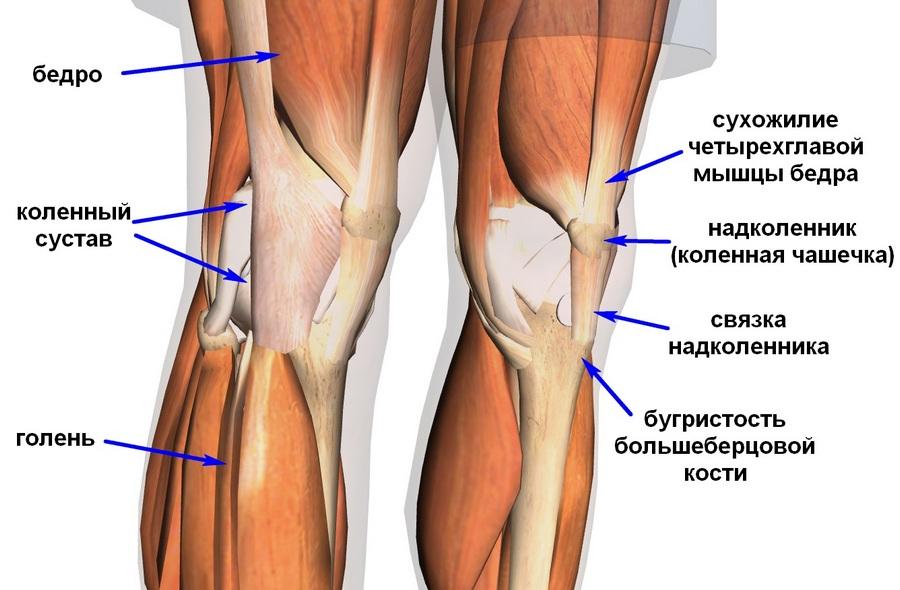 Тендинит лечение ноги