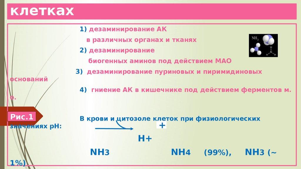 Что такое азотемия: симптомы и признаки, причины, лечение, диагностика, профилактика, типы, осложнения, риски и последствия