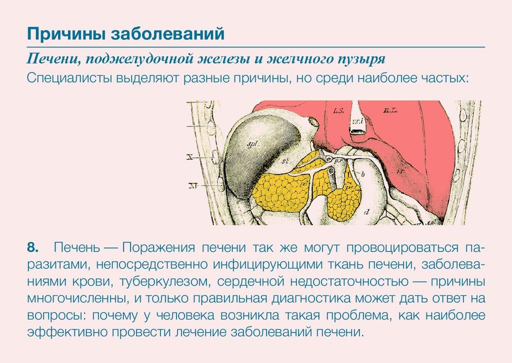 Болезни печени, желчного пузыря и поджелудочной железы