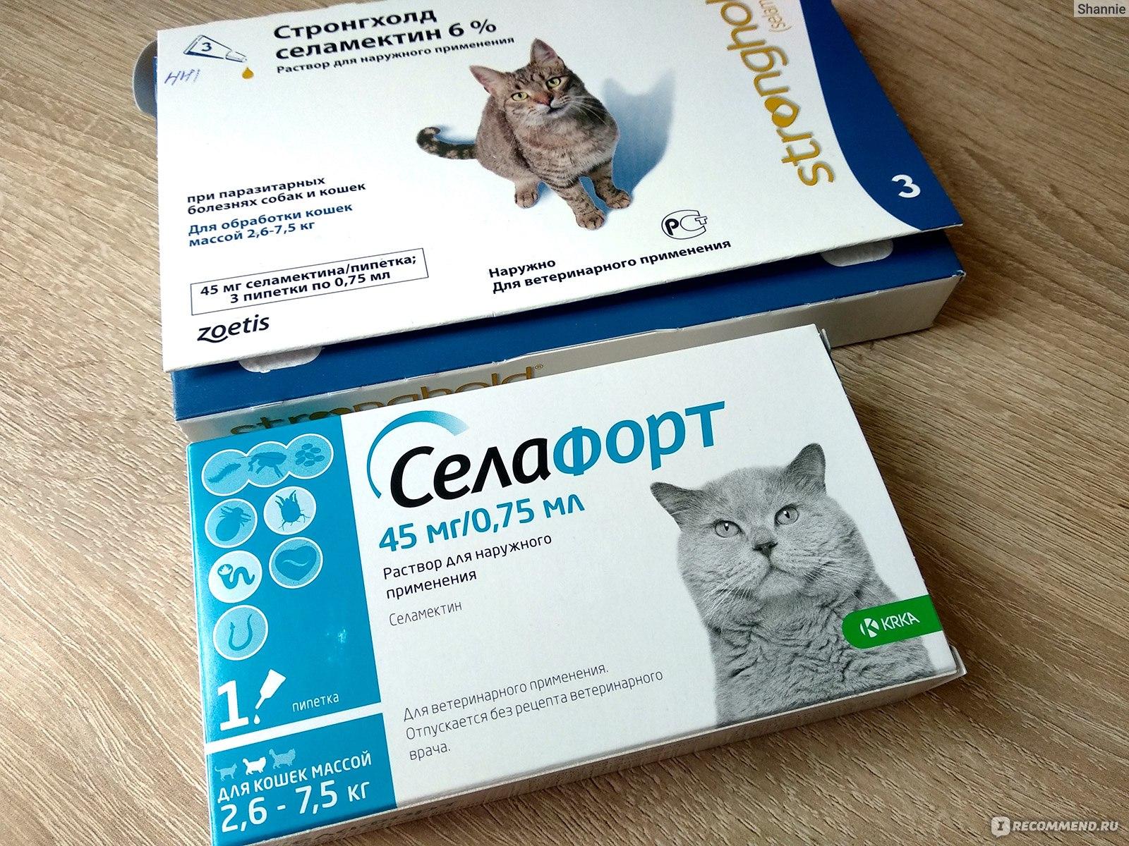 Обзор ветеринарного препарата стронгхолд