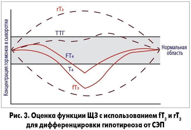 Т3 общий