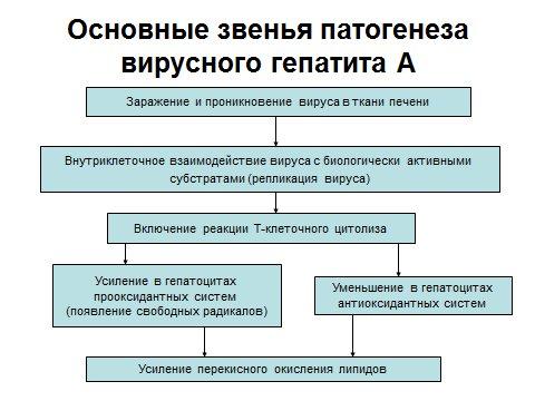 Понятие о этиологии, патогенезе, клинической картине болезни