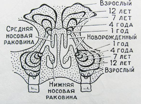 Кровохарканье код мкб 10