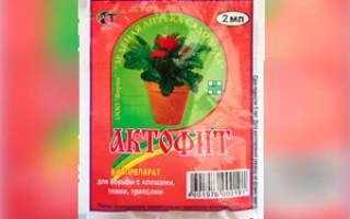 Чем вреден актофит для человека и растений – отзывы садоводов