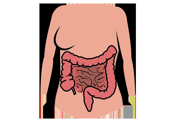 Лечение поверхностного колита толстой кишки
