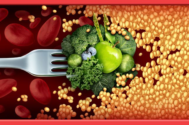Холестерин и липопротеиды. классификация уровней холестерина