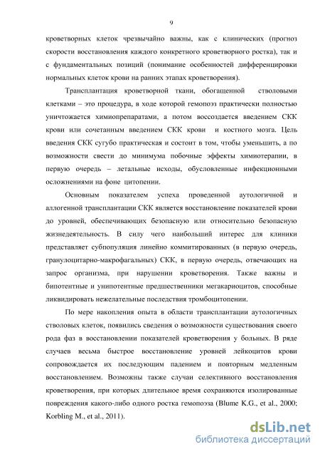 Стволовая клетка : definition of стволовая клетка and synonyms of стволовая клетка (russian)
