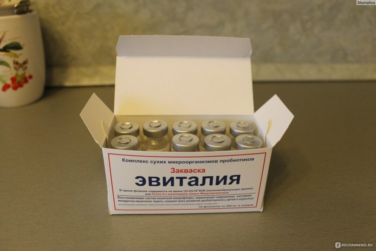 Эвиталия закваска. инструкция по применению, приготовлению в мультиварке, йогуртнице, для творога. состав, отзывы врачей