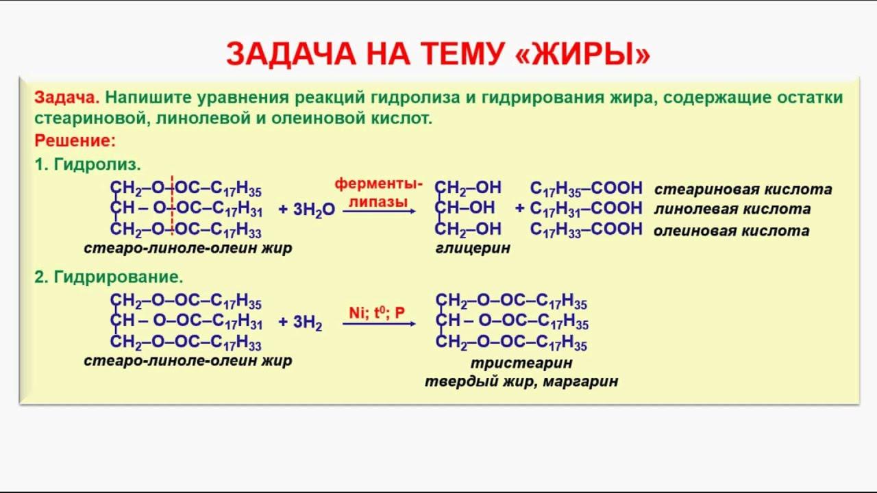 Жиры: строение, химический состав, функции и применение