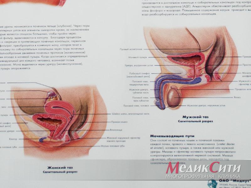 Выделения из уретры у мужчин: норма и патология