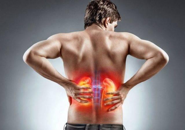 Туберкулез почек у мужчин: симптомы, диагностика, лечение заболевания