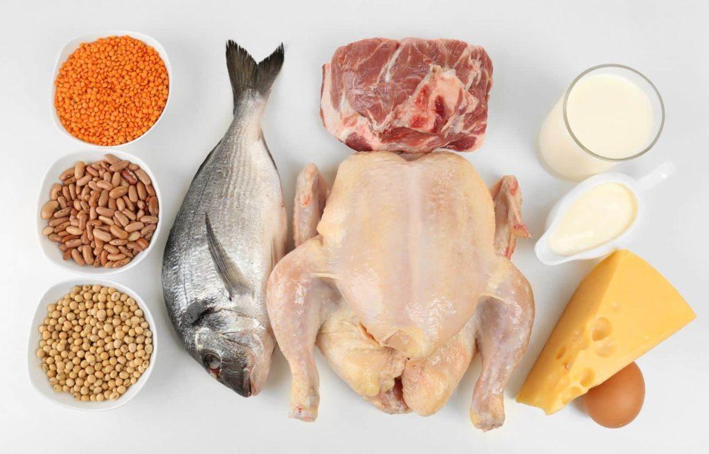 Какое Мясо Можно Есть На Белковой Диете. Белковая диета