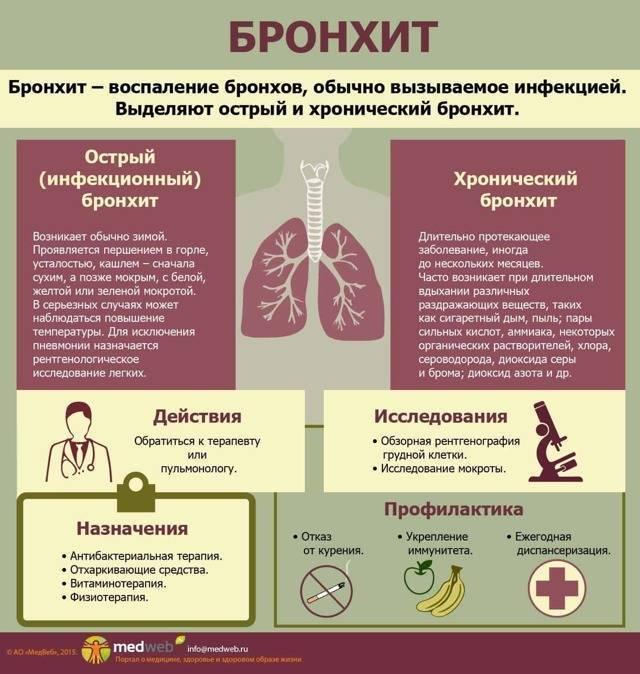 Лечение хронического бронхита народными средствами