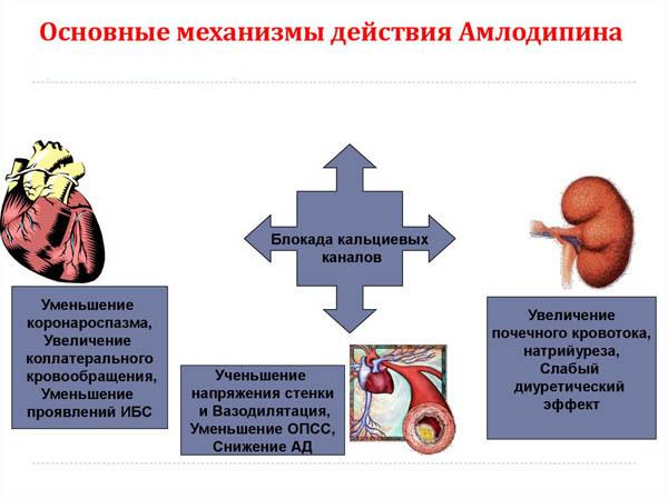 Особенности применения препарата апроваск от гипертонии: инструкция, отзывы пациентов, аналоги