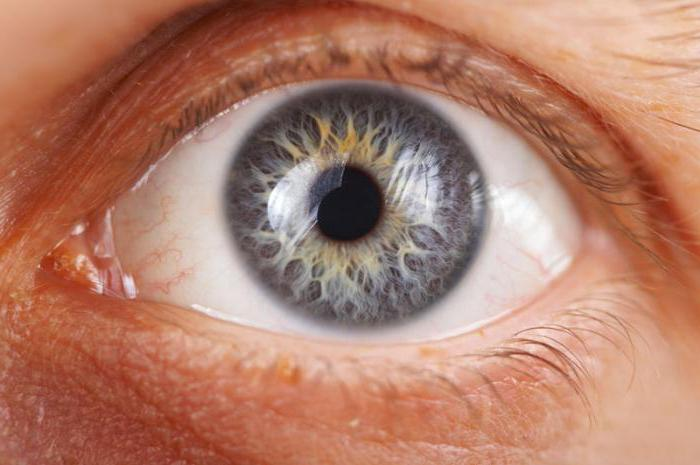 Глазные капли сигницеф