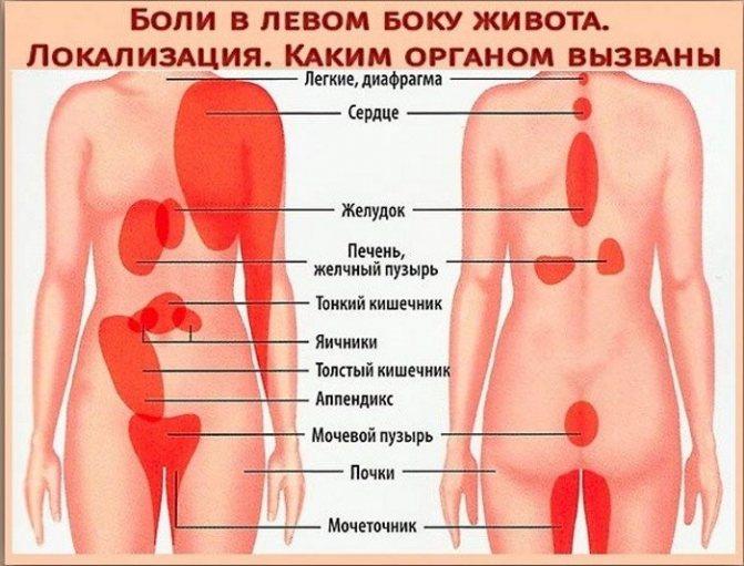 9 главных причин боли в левом боку на уровне талии на спросиврача