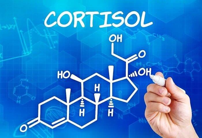 Гормоны надпочечников: кортикостероиды