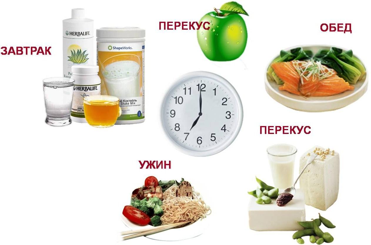 Диеты питание до 12. диета до 12 можно есть все – отзывы