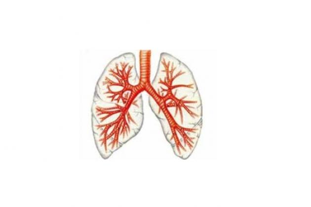 Профессиональный бронхит (пылевой, токсико-пылевой)