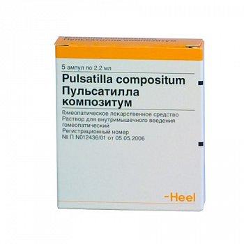 Пульсатилла в гомеопатии: показания к применению и отзывы