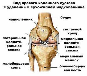 Восстановление и реабилитация связок коленного сустава после травмы | все о суставах и связках