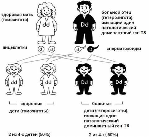 Особенности, варианты развития и тактика лечения туберозного склероза у детей