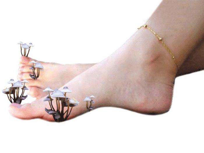 Дешевое средство от грибка ногтей на ногах для эффективного лечения