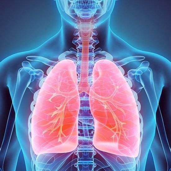 Проведение аускультации при пневмонии