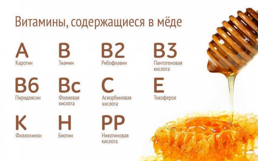 Полезные свойства натурального меда для здоровья организма
