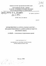 Стволовые клетки растений | портал 1nep.ru