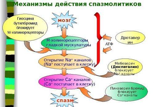 """""""спазмалгон"""" (уколы): инструкция по применению, показания, действующее вещество, дозировка, аналоги, отзывы"""