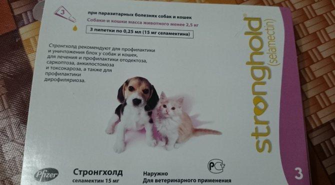 Стронгхолд для кошек - инструкция по применению капель от блох, глистов и клещей, дозировка, аналоги и цена