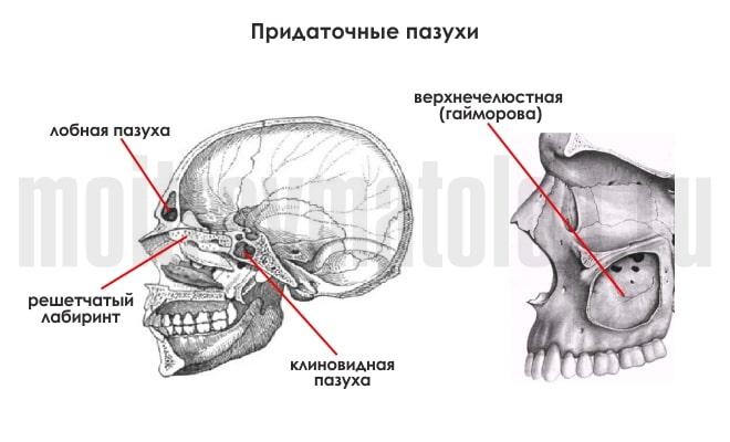 Перелом костей носа: симптомы и лечение