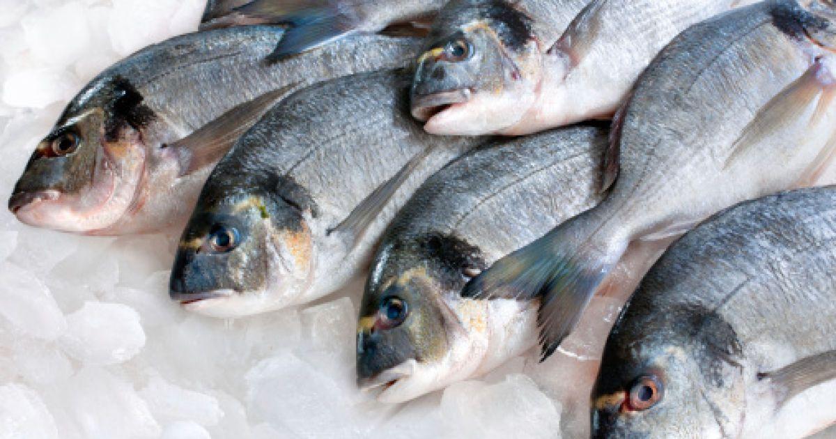 Ребенок не ест рыбу. что делать?