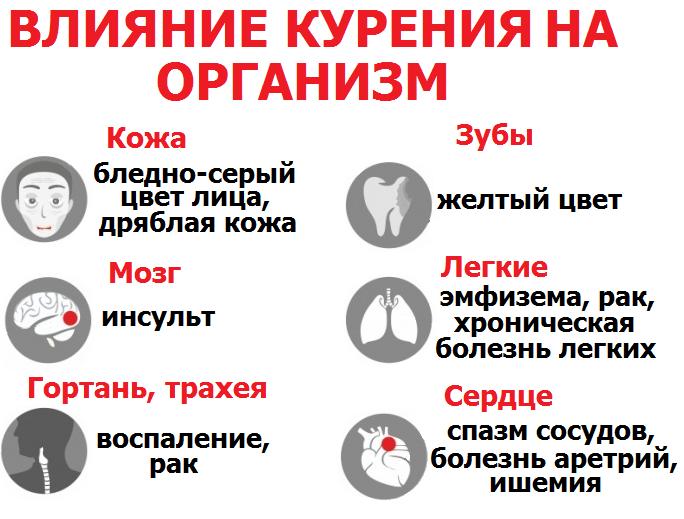 Топ-7 самых популярных наркотиков в россии. список 2018 года