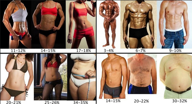 Диета для набора мышечной массы — sportwiki энциклопедия