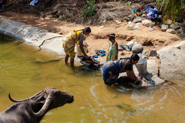 Холера: симптомы, причины, эпидемии холеры, методы лечения и профилактики