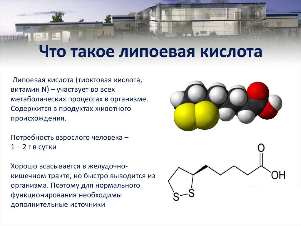 Витамин n (липоевая и тиоктовая кислота) – описание, применение, польза, в каких продуктах содержится n