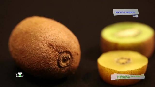 Сыр с белой плесенью: виды, польза и вред | food and health